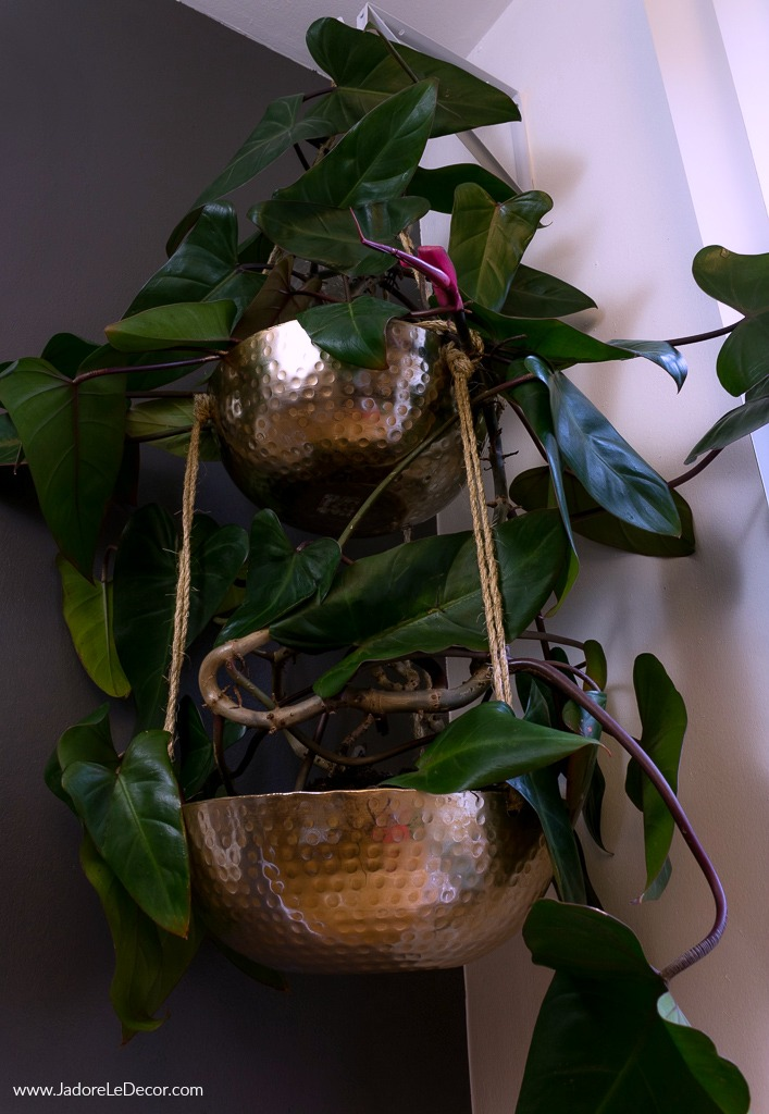 www.JadoreleDecor.com | Follow along as I hack a hanging planter inspired by my favorite store, Anthropologie.