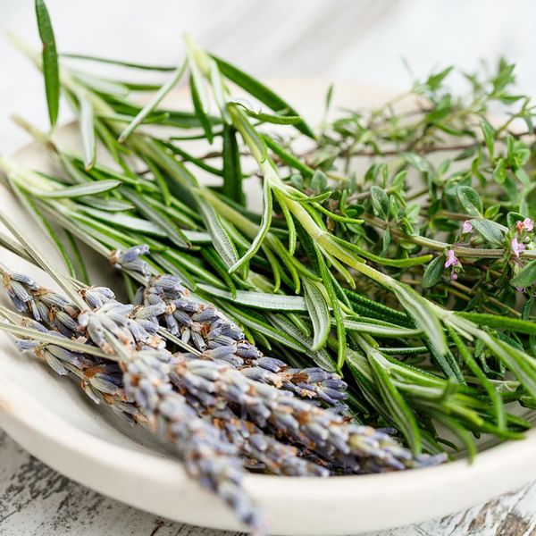Preserving the Summer Herbal Bounty - Harvesting isn't just for fall ‒ it happens all season. Discover how and when to cut fresh herbs. Be encouraged to use them in your everyday cooking. We'll discuss which is the best way to preserve herbs whether it be dried, fresh, or frozen.