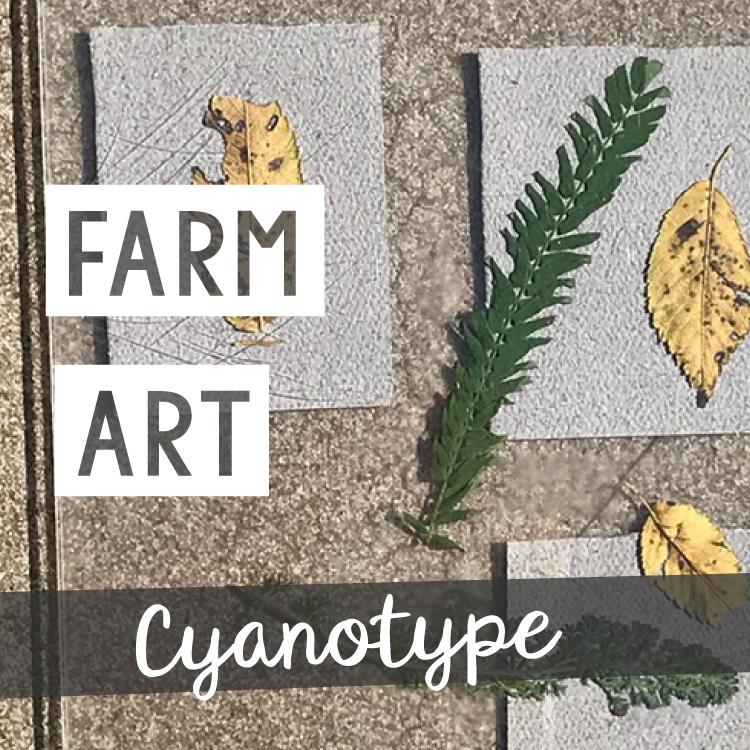 cyanotype-blank.png