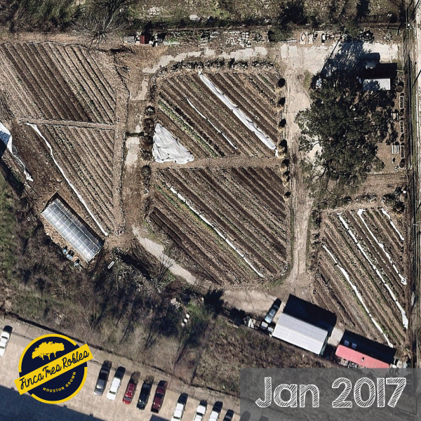 Jan2017.png