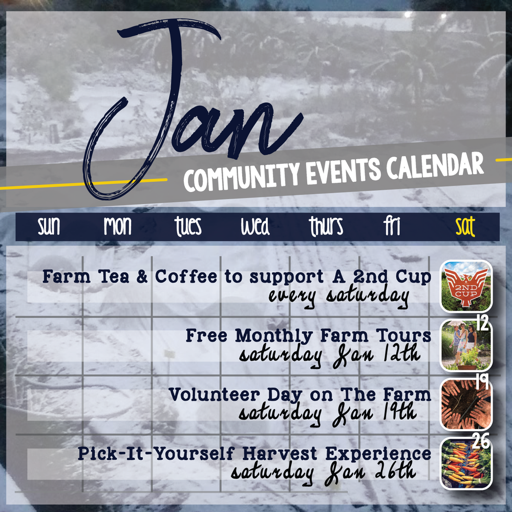 events-calendar-JAN.png