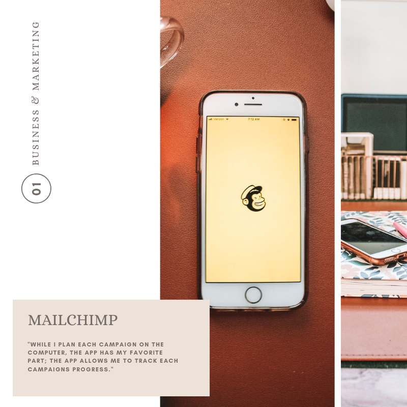 Mail Chimp_creative business tips_palms and paper