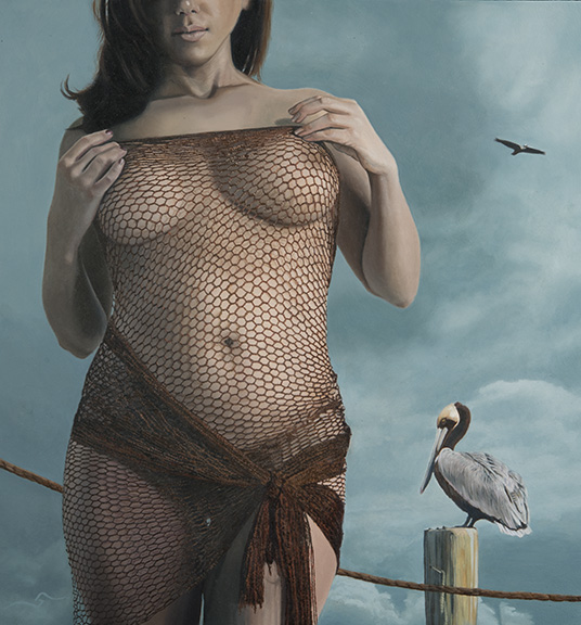 Pelicans and Fishnets