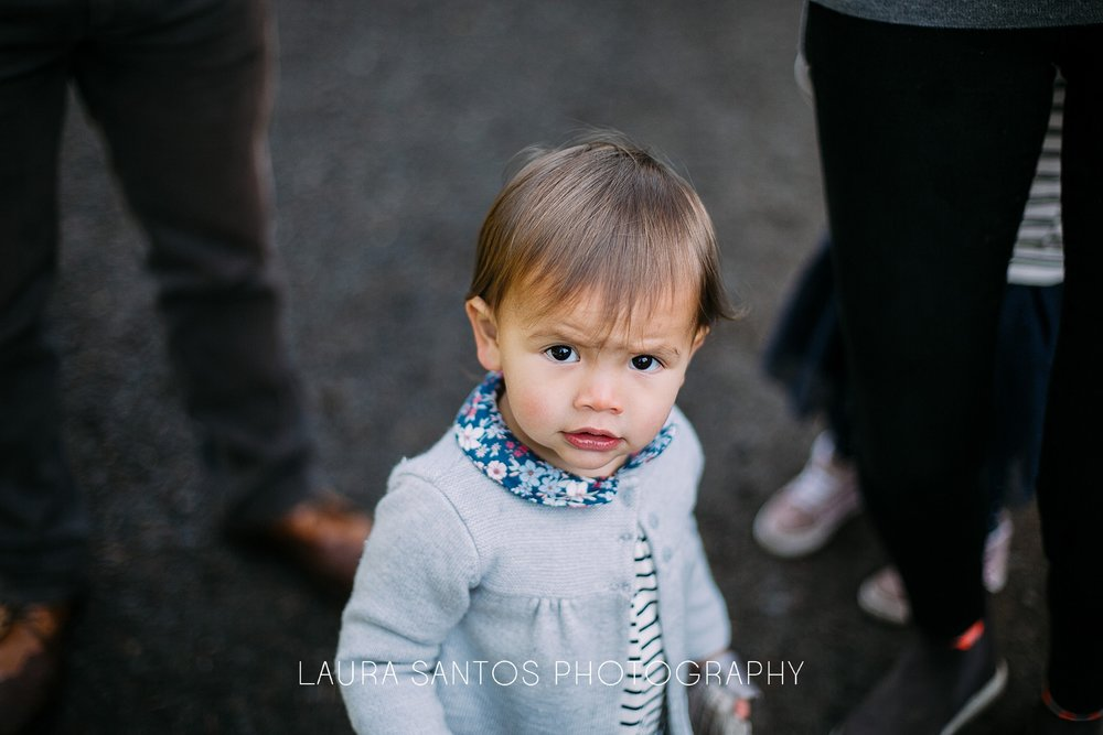 Laura Santos Photography Portland Oregon Family Photographer_0527.jpg