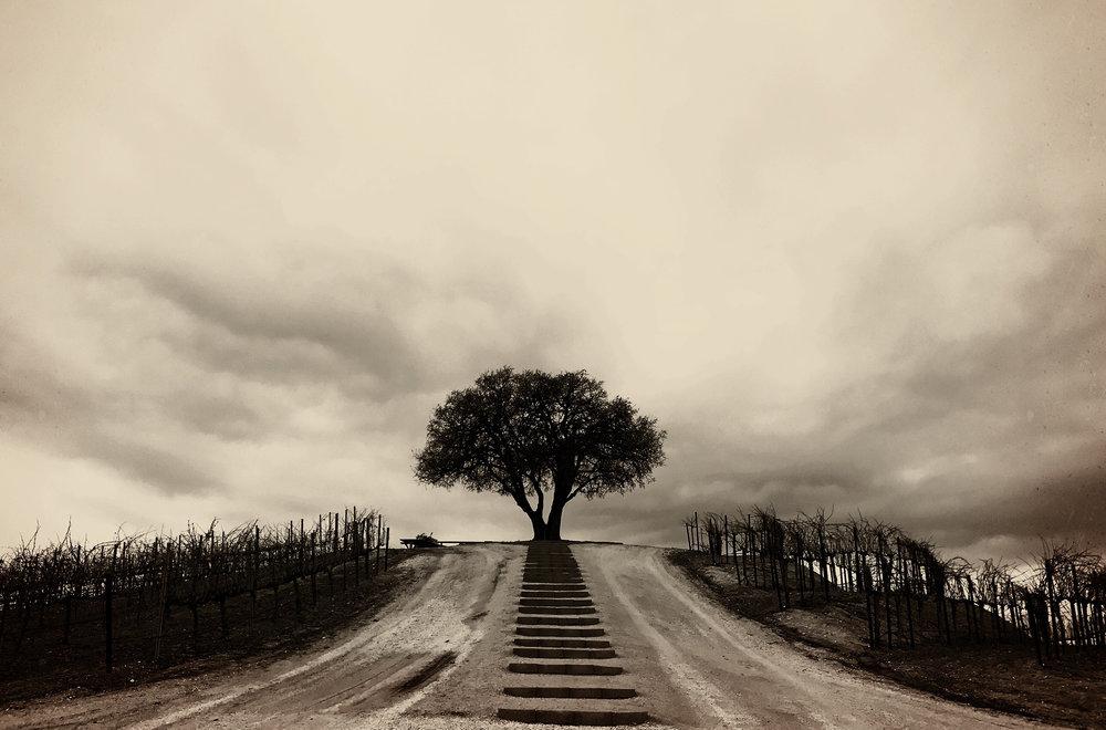 Strength  | Good Grief Series