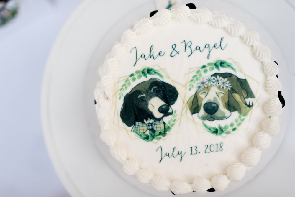 Blog_SeniorTails_JakeBagelWedding036.jpg