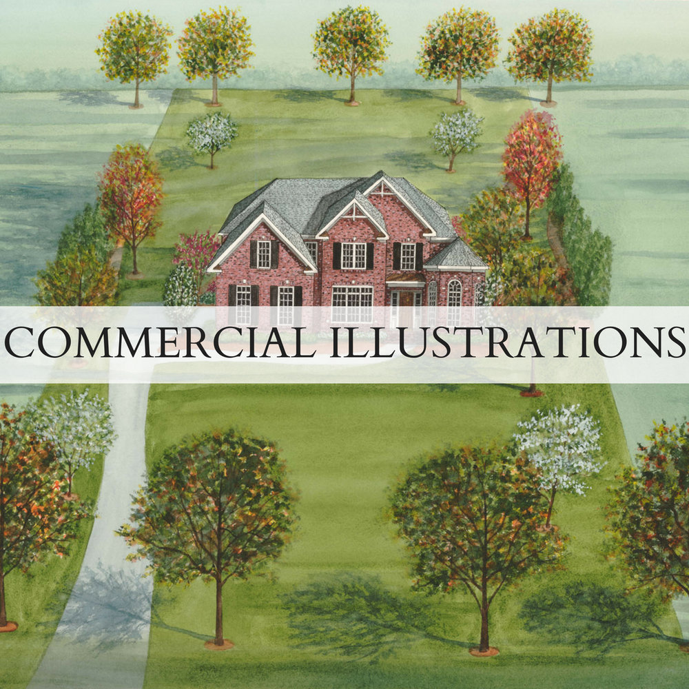 COMMERCIAL ILLUSTRATIONS.jpg