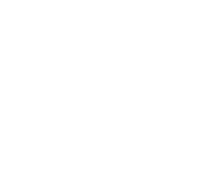 Sandro Demaio Foundation