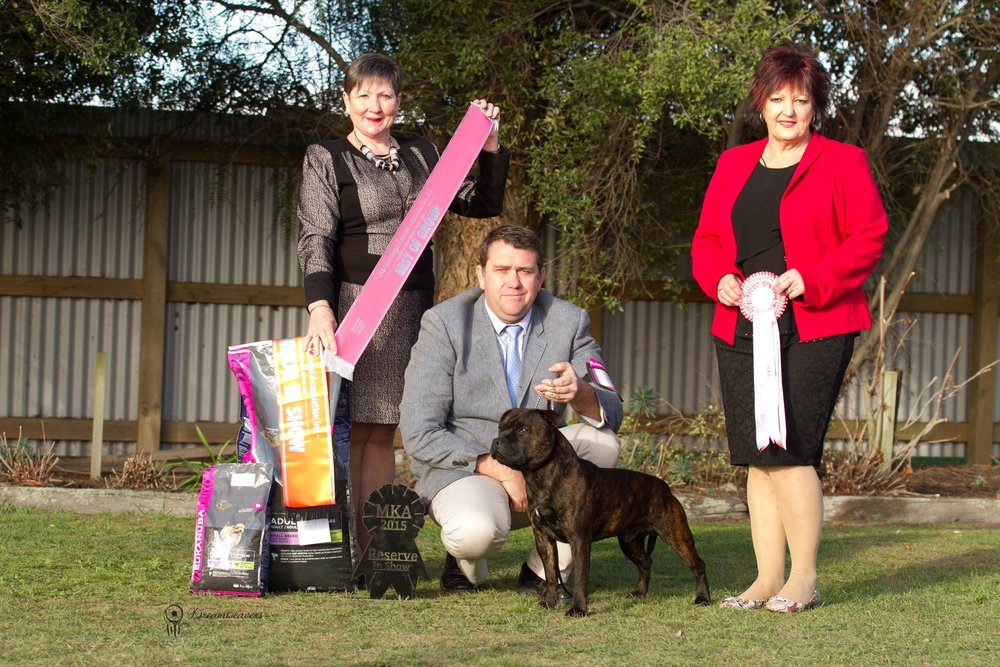 All breeds, Reserve Best In Show