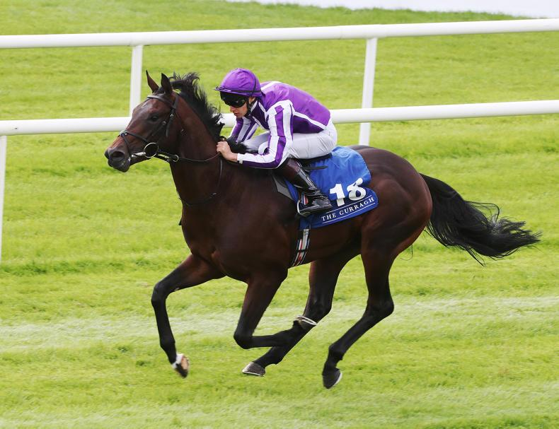 Ten Sovereigns is an ante-post market leader for next year's 2000 Guineas following two very easy wins at the Curragh.   Photo.carolinenorris.ie