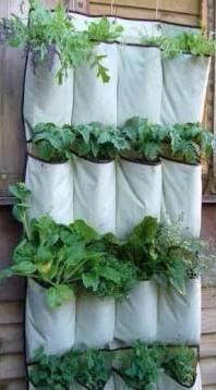 garden-shoe-bag-pic.jpeg