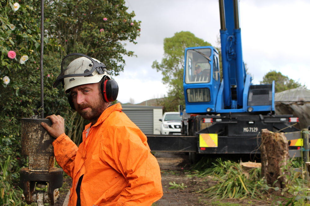 Horowhenua Tree Surgeon James Petrie