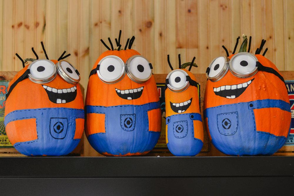 Willowview Farms Minion Pumpkins :)