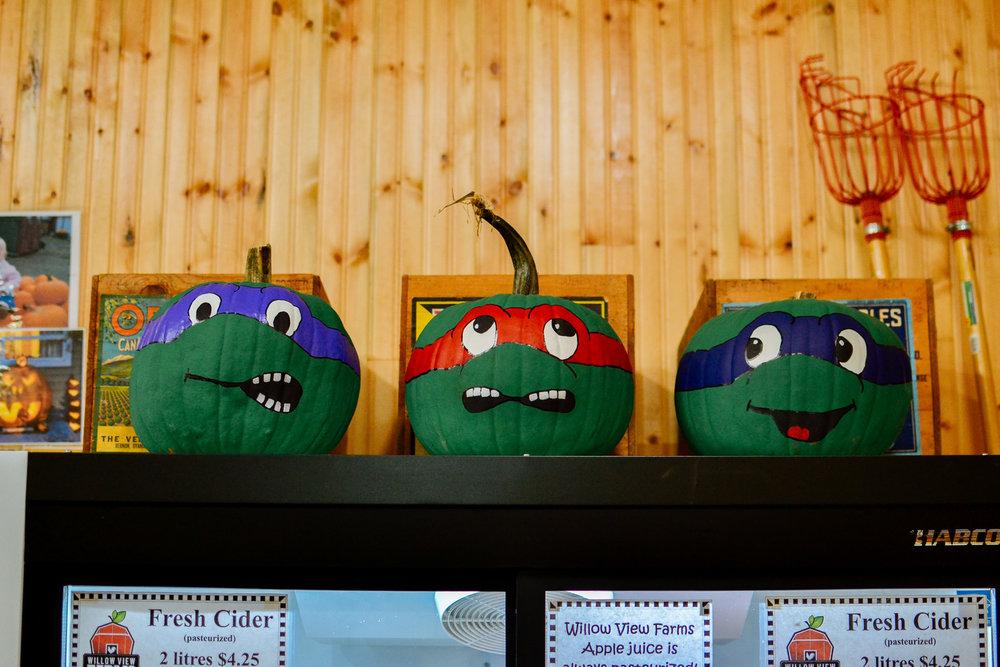 Willowview Farms Ninja Turtle Pumpkins :)