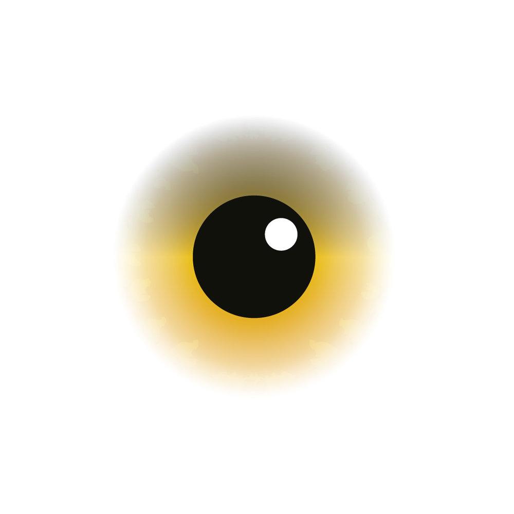 eye_def1.jpg