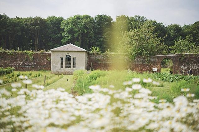 The beautiful Stackpole Mencap gardens is just a 5 minute drive (or 30 minute walk) from the Schoolroom Cottage and is the perfect spot to wander and unwind in. 🌿The walled gardens are home to an array of flower beds filled with local produce, vegetables and flowers. 🌷🍓🥕There is a tea rooms and a little shop where you can purchase the home grown produce or plants to grow at home 🌿 ☕️🌽 It truly is a magical place and a must visit if you holiday in Bosherston 😊 📸 @jacquesboissevain