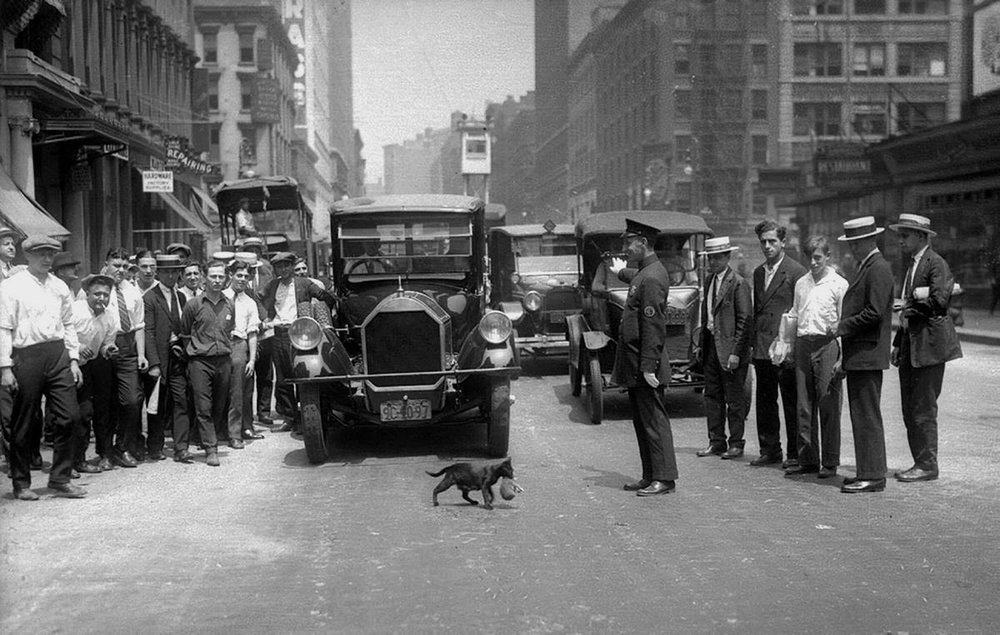 police-stopped-traffic-for-cats-1925.jpg