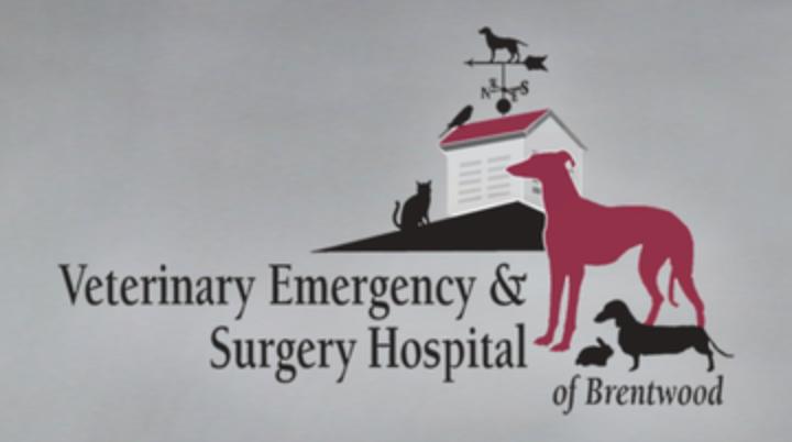 Veterinary Emergency & Surgery Hospital