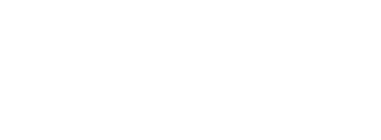 HR Shared Services Institute