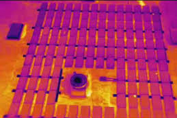 Scanifly-thermal.jpg