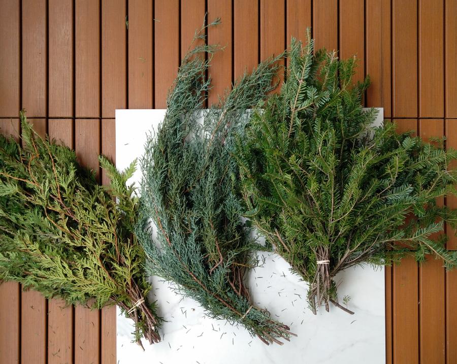 Cedar, Juniper, Fir