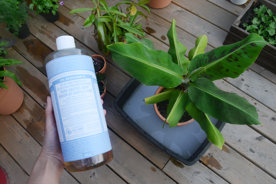 An alternative to a full bathtub is a small container