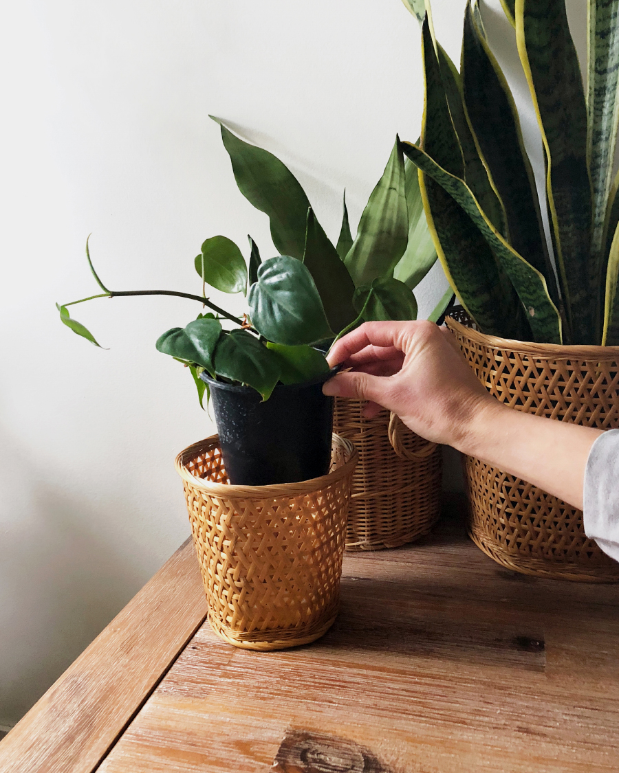 Example of placing a plastic pot in a basket