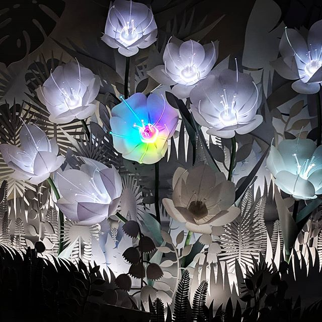AI-powered color changing flowers at Google #aiflowers #uxdesign #ux #designinspiration #userexperience