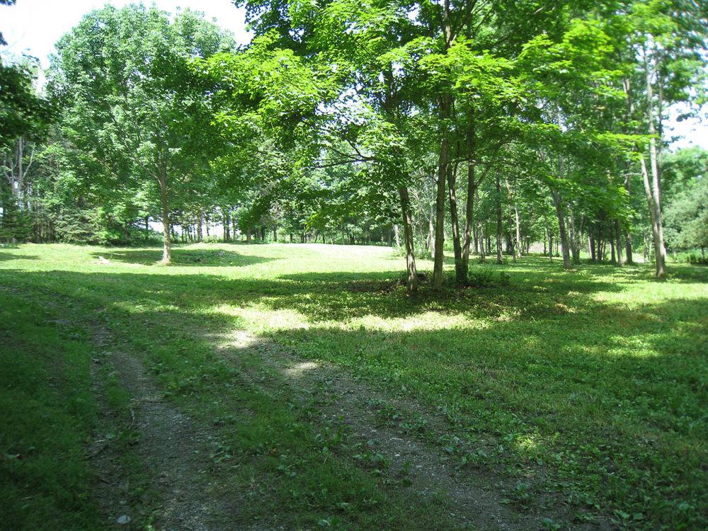 201 Farm Road.jpg