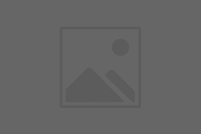 STELLA MCCARTNEY FALABELLA SHAGGY DEER MINI SHOULDER BAG  $770.00