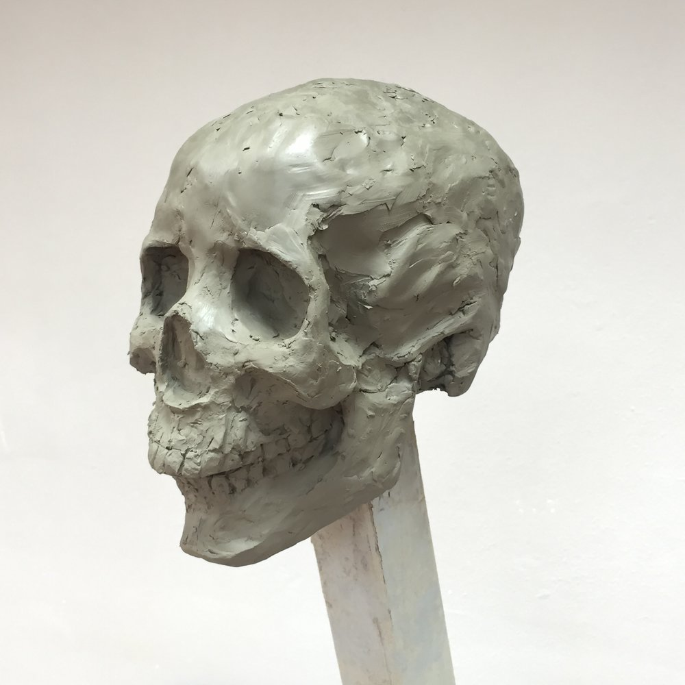 Skull, 2017. Clay. Lifesize.