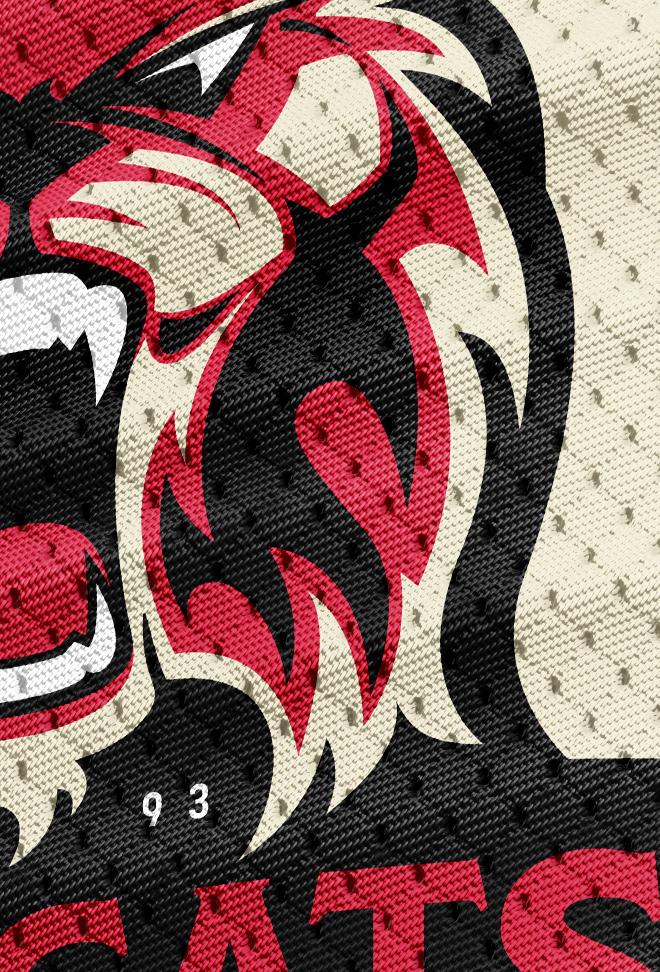 bobcats-jersey-texture.jpg