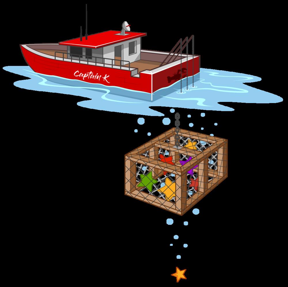 starfish-boat.png