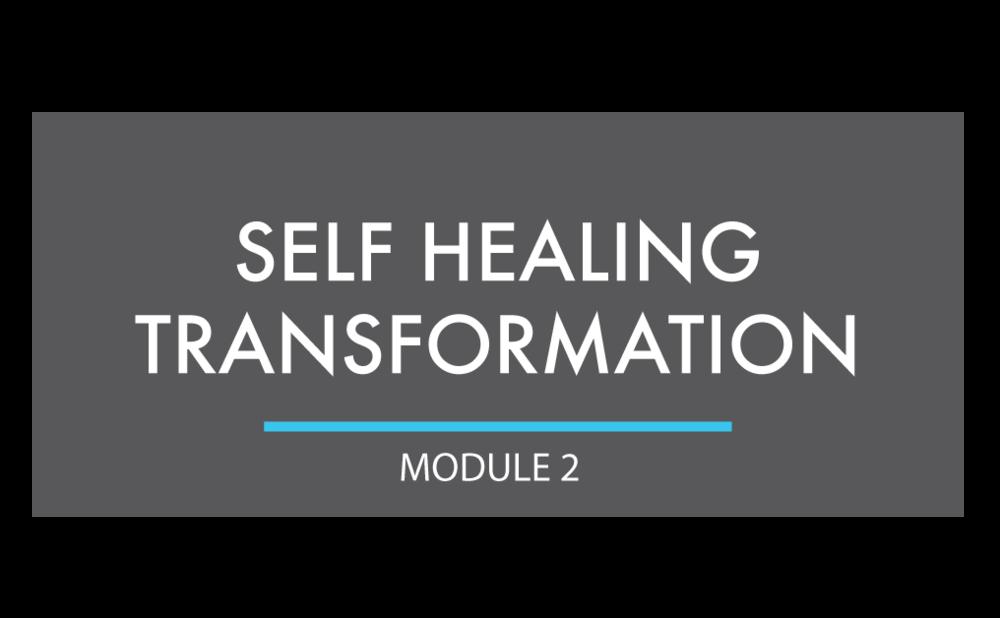 HIA-Product_Selfhealingtransformation.png