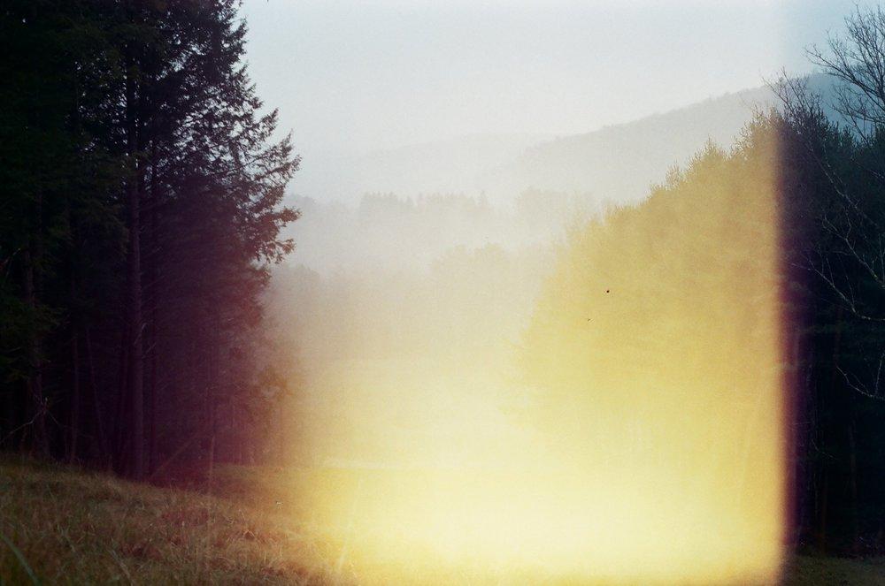 Isaac Green Diebboll - nature photo