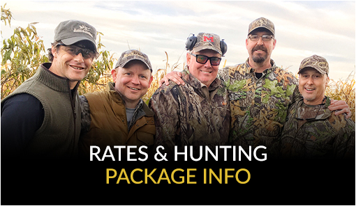 Rates and Package Information