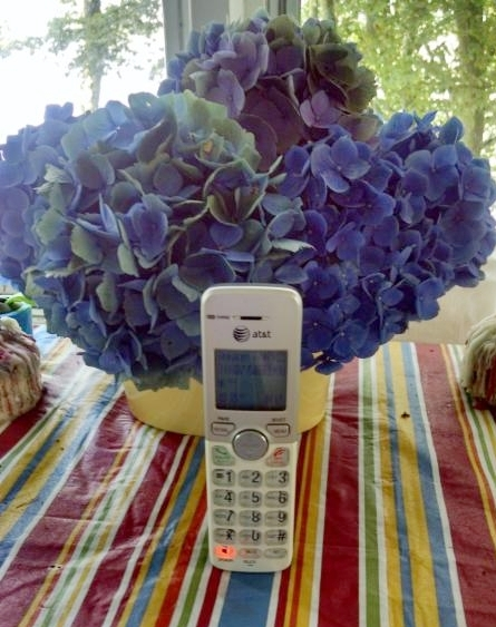 Barbara Loftus - lake side telephone for dial-in services.jpg