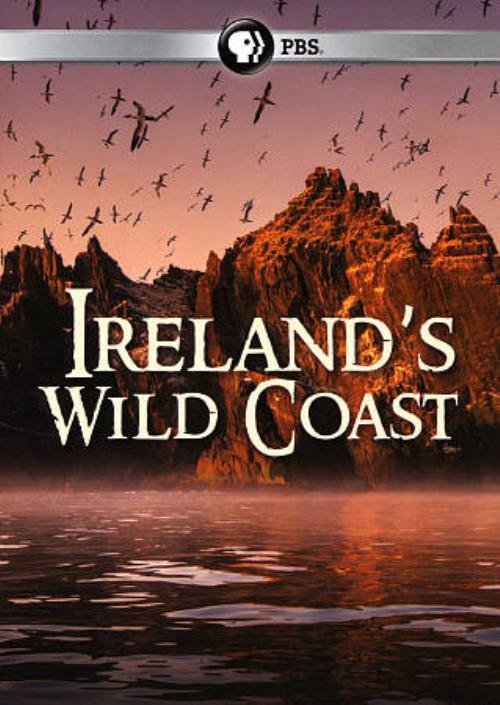 Ireland_s wild coast.jpg