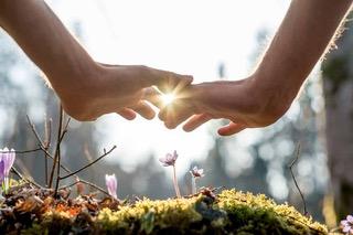 Healing-From-Complex-Trauma-Hands-In-The-Sunlight.jpeg