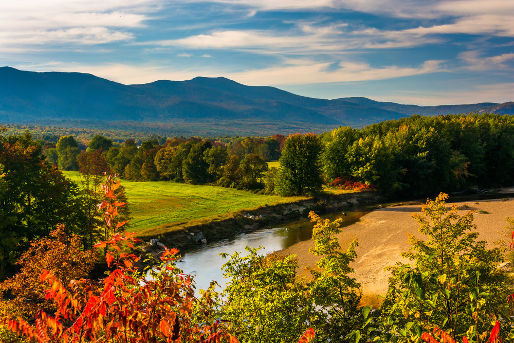 New Hampshire  -