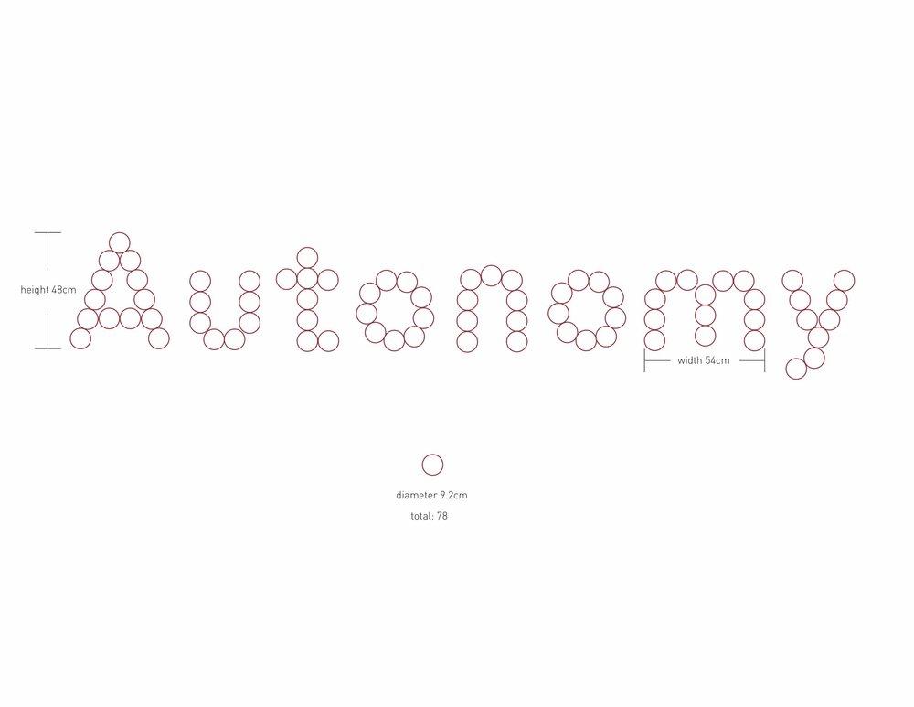 Autonomy-installation2.jpg