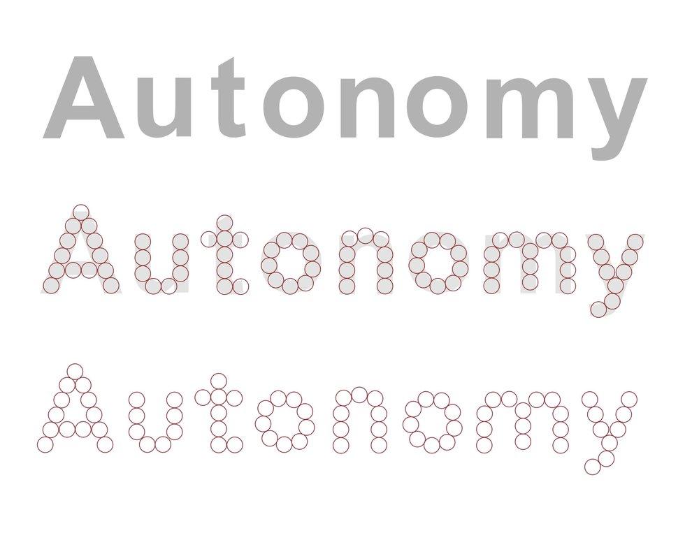 Autonomy-installation1.jpg