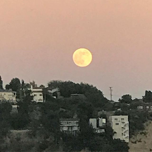 "The #fullmoon in effect! ""Tonight's full moon in Capricorn falls a day after Mars stations retrograde. Not only is this a formidable full moon conjunct Saturn, full of lessons regarding our responsibilities, boundaries, and restrictions, but Mars's station retrograde is one of the most important transits of 2018."" - @chaninicholas  #LosAngeles #nela #mountwashington #MyDayInLA #fullmoon #stawberrymoon"