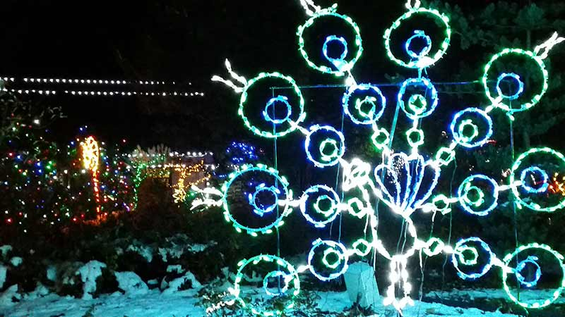 akron-zoo-lights-photos7.jpg
