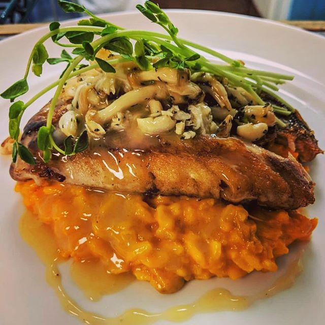 Roasted snapper, carrot risotto, wilted mushrooms and crab butter. A tasty dish this weekend BHAM #feedyousoonbham #smallbusinessowner #bhamgram #bhameats #feedyousoon