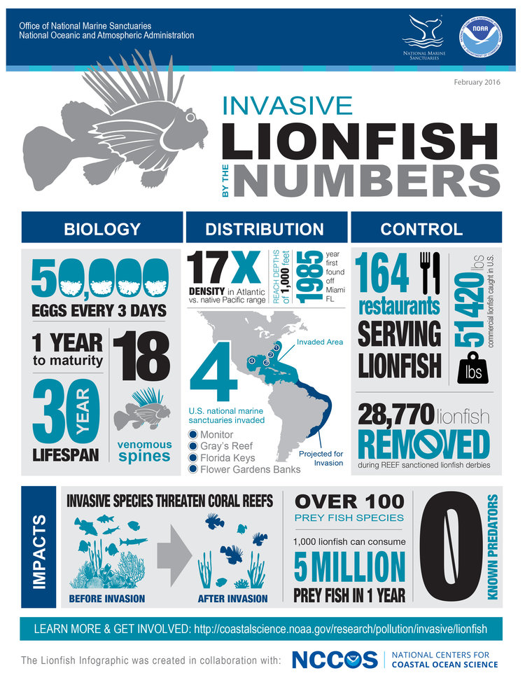 ONMS-NOAA LionfishBytheNumbers.jpg