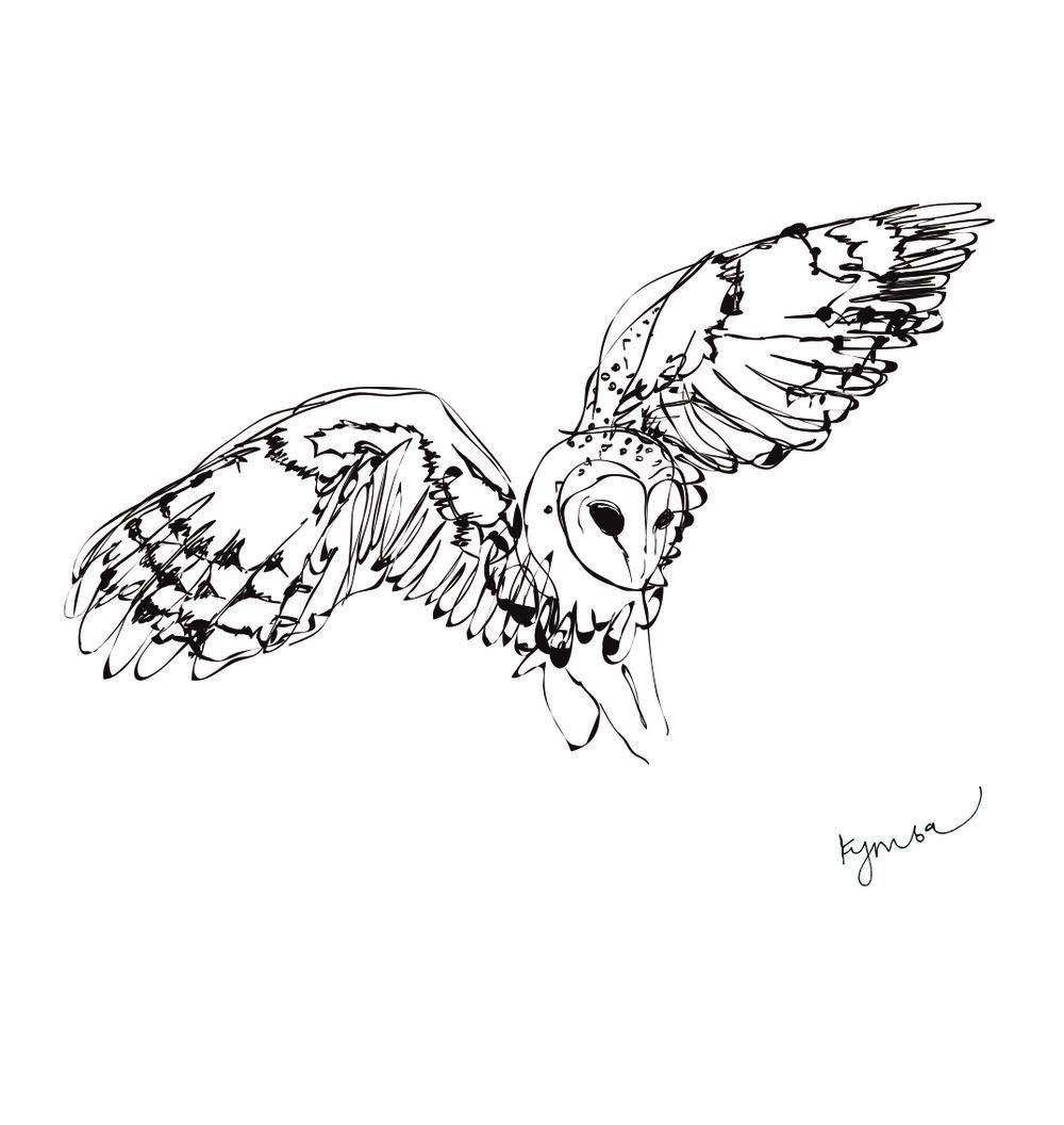 Owl-Signed.jpg