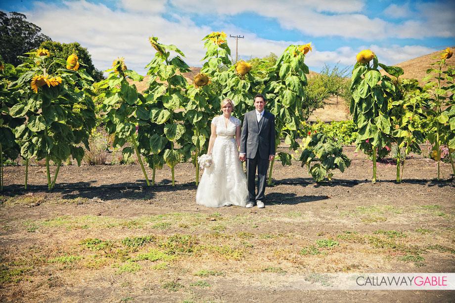 100808-soldinger-wedding-1611-Edit-2