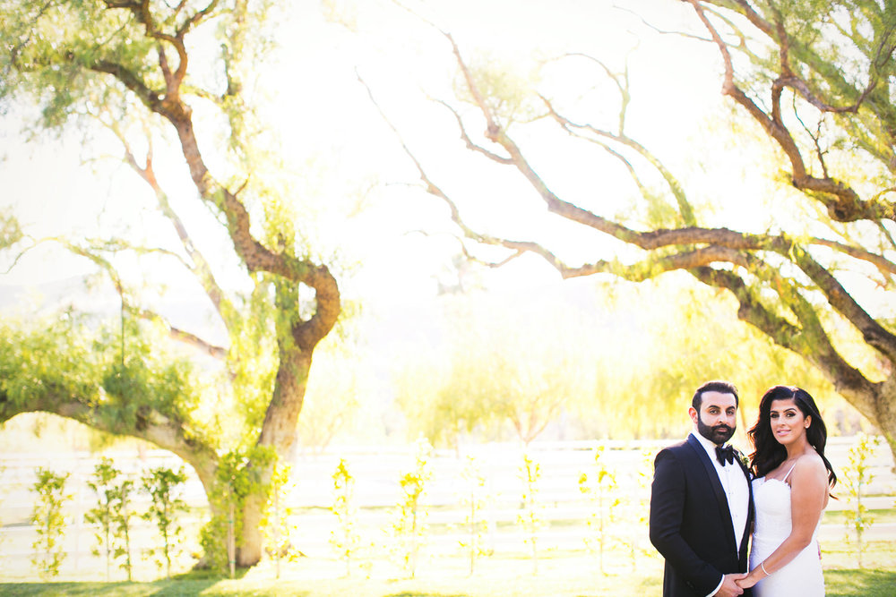 Hummingbird Nest Ranch Wedding - Couple Portrait