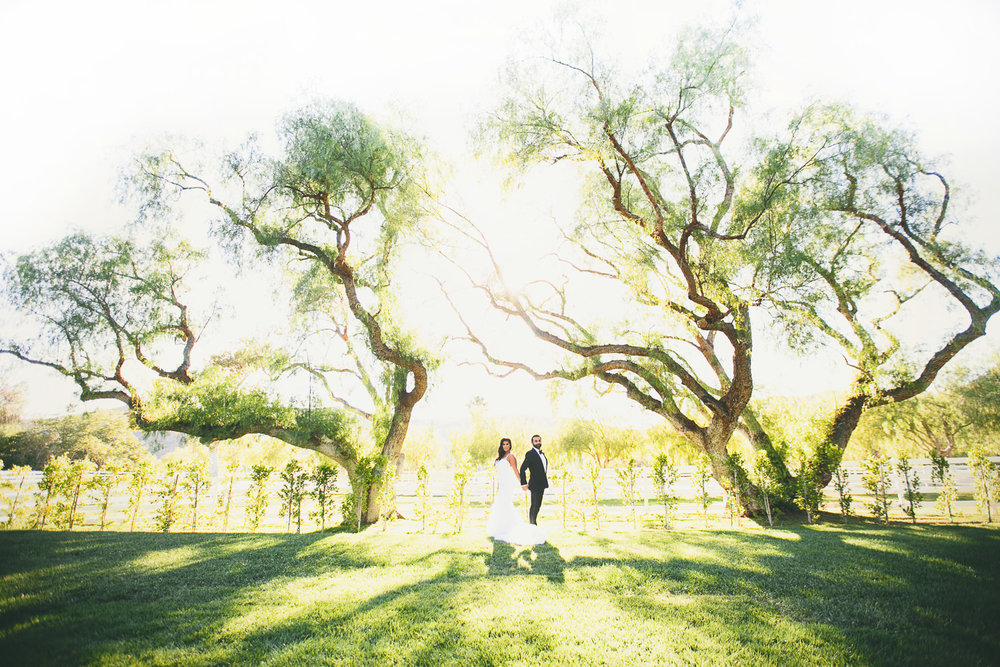 Hummingbird Nest Ranch Wedding - Together Under The Trees